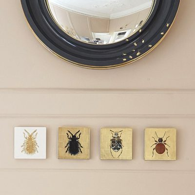 Woodlice mirror by Tennant & Tennant