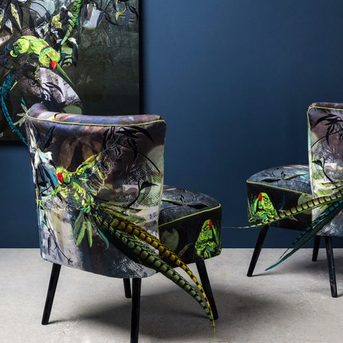 Dandy Parakeets Cocktail Chairs by Jacky Puzey