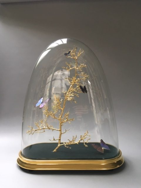 Large Square Dome With Butterflies by Tennant & Tennant